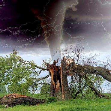 Ubezpieczenie od burz i deszczu nawalnego w Wiener.